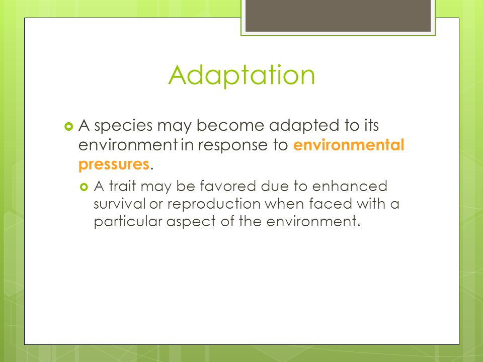 Adaptation A species may become adapted to its environment in response to environmental pressures.