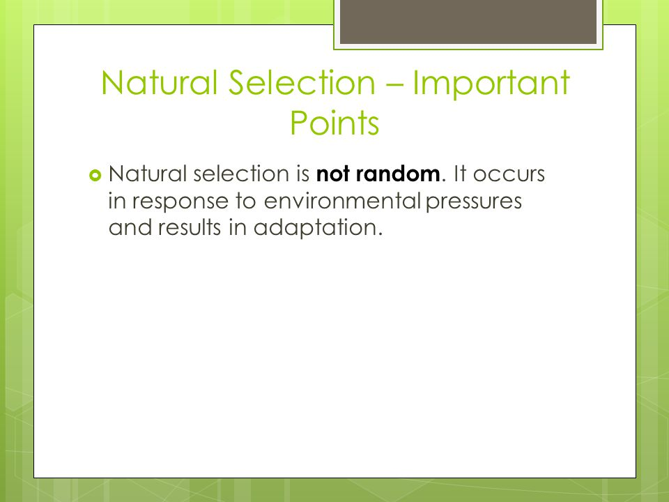 Natural Selection – Important Points