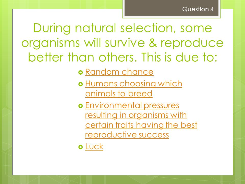 Question 4 During natural selection, some organisms will survive & reproduce better than others. This is due to: