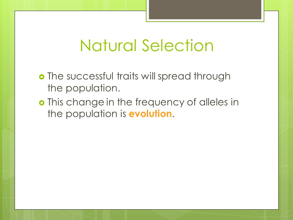Natural Selection The successful traits will spread through the population.