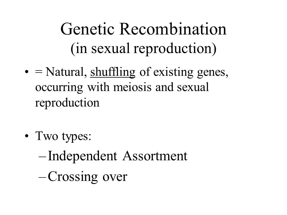 Genetic Recombination (in sexual reproduction)