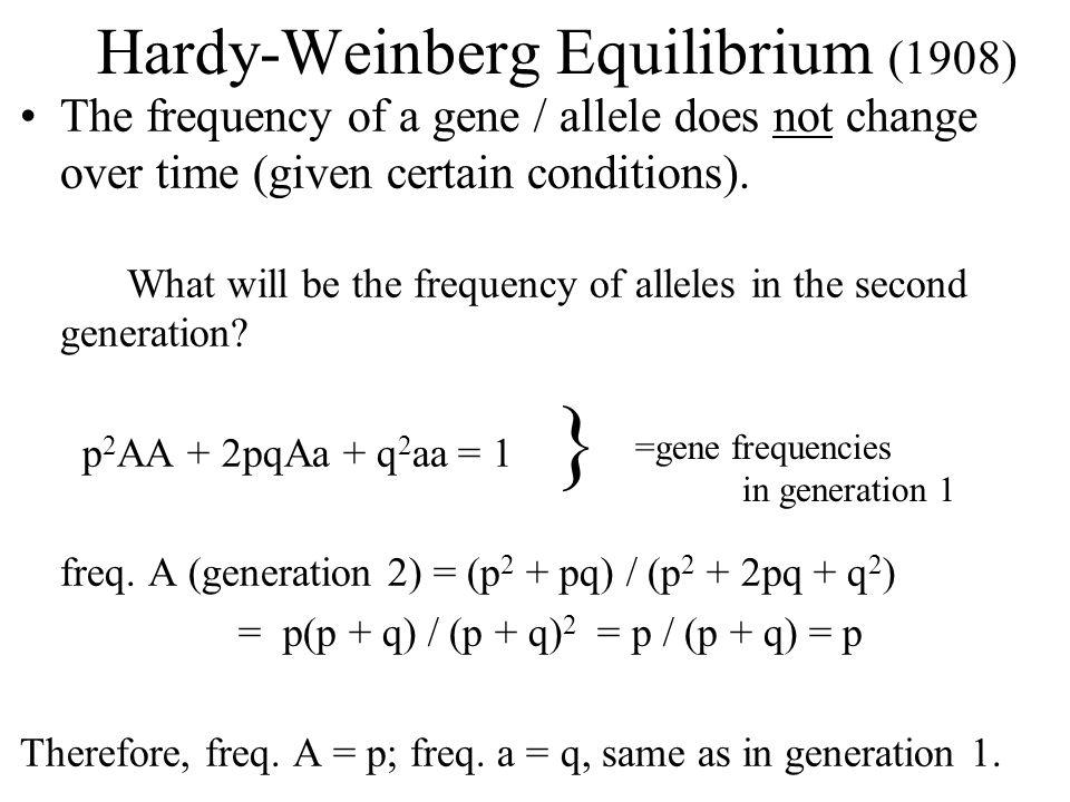 Hardy-Weinberg Equilibrium (1908)