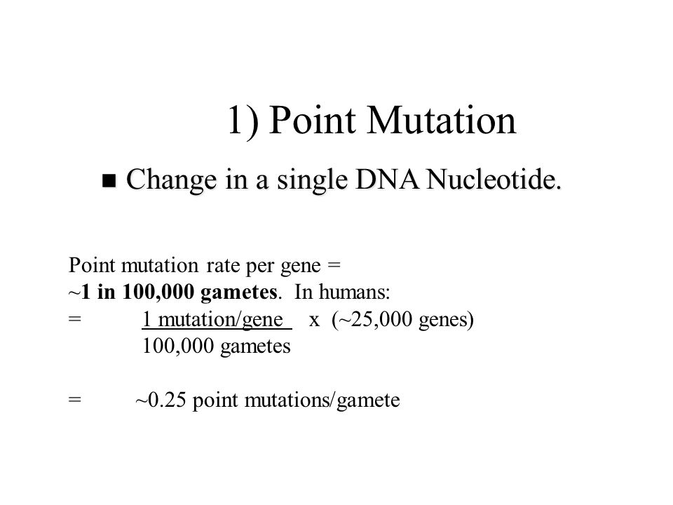 1) Point Mutation Change in a single DNA Nucleotide.