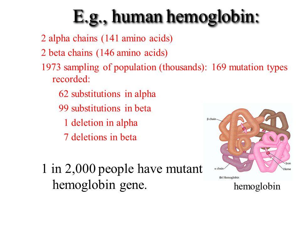 E.g., human hemoglobin: 1 in 2,000 people have mutant hemoglobin gene.