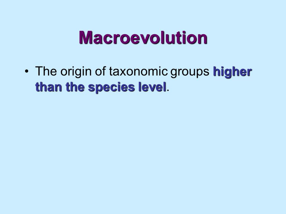 Macroevolution The origin of taxonomic groups higher than the species level.