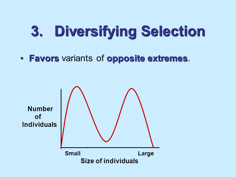 3. Diversifying Selection