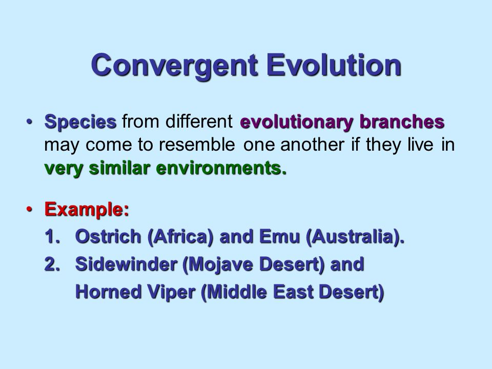 Convergent Evolution Species from different evolutionary branches may come to resemble one another if they live in very similar environments.