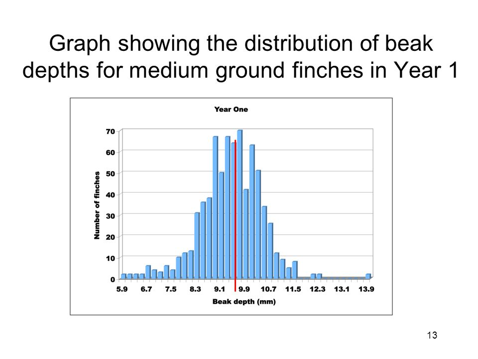 Graph showing the distribution of beak depths for medium ground finches in Year 1