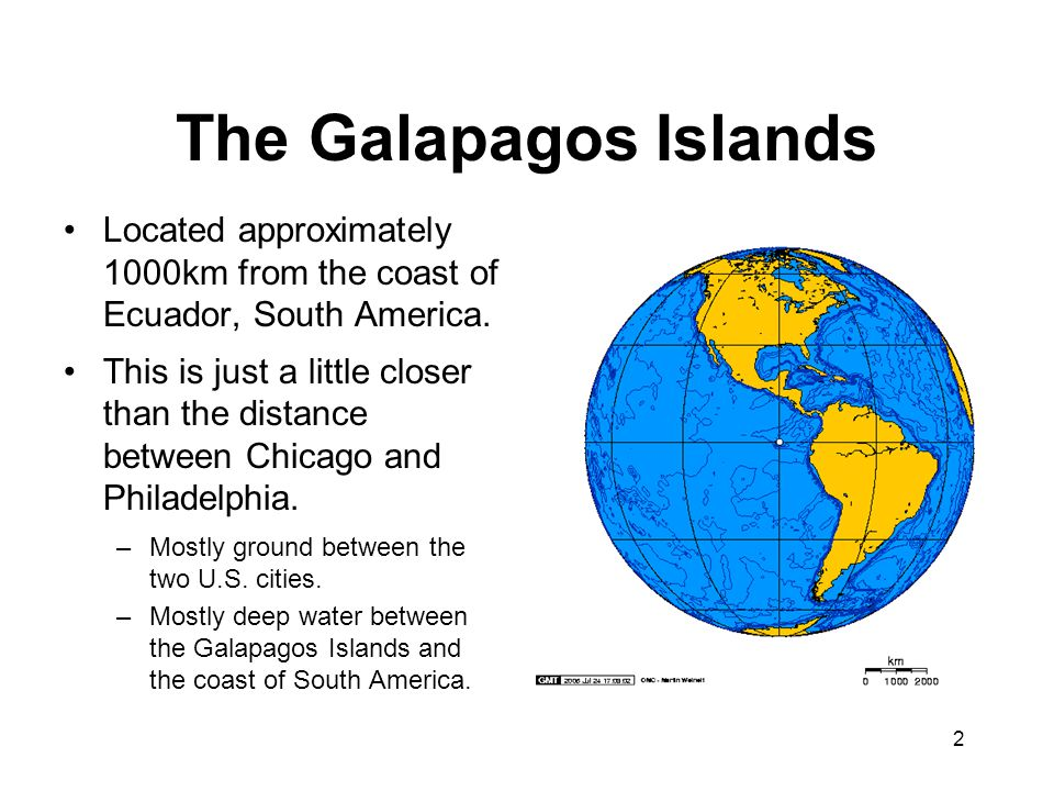 The Galapagos Islands Located approximately 1000km from the coast of Ecuador, South America.