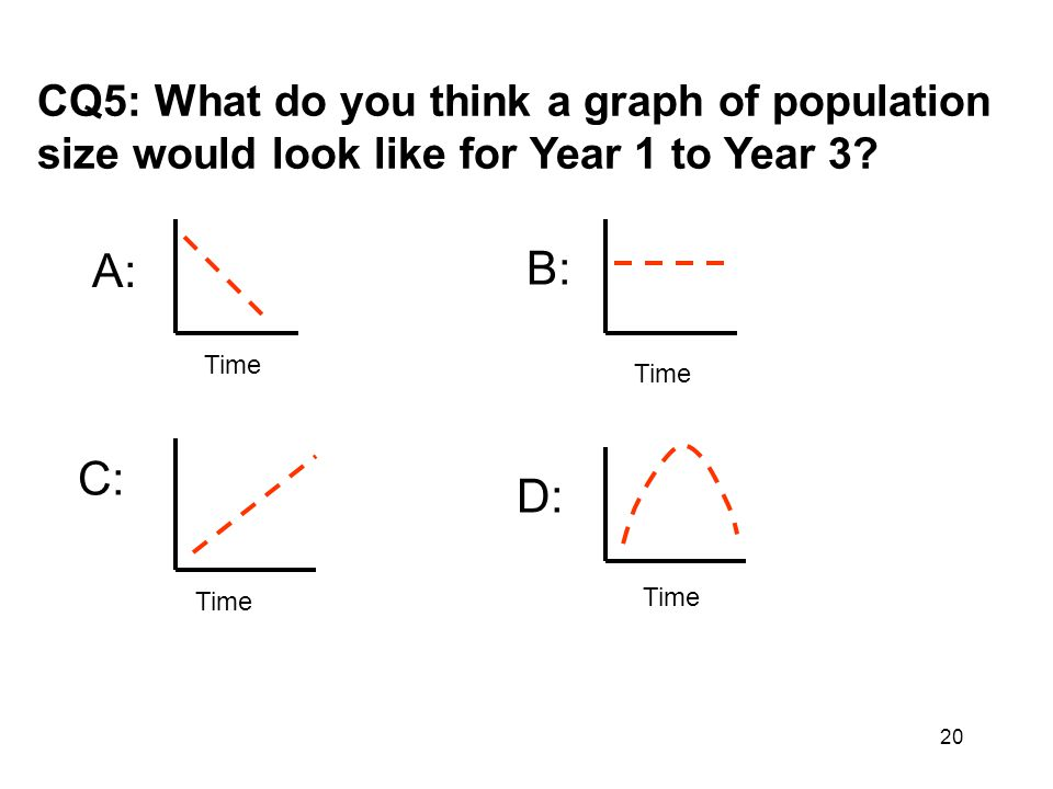 CQ5: What do you think a graph of population size would look like for Year 1 to Year 3