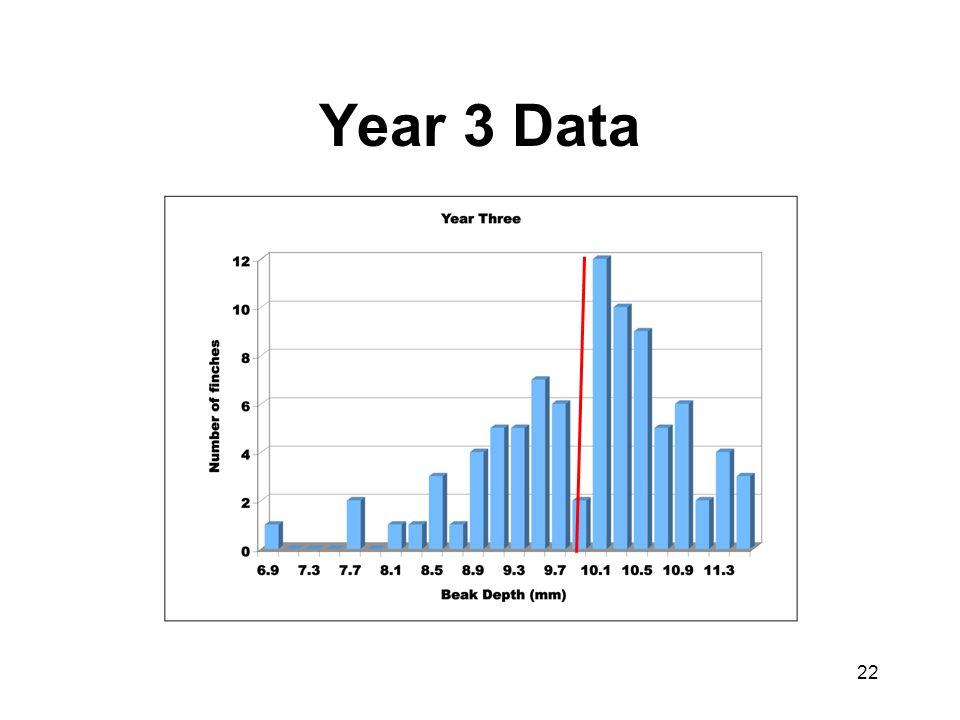 Year 3 Data