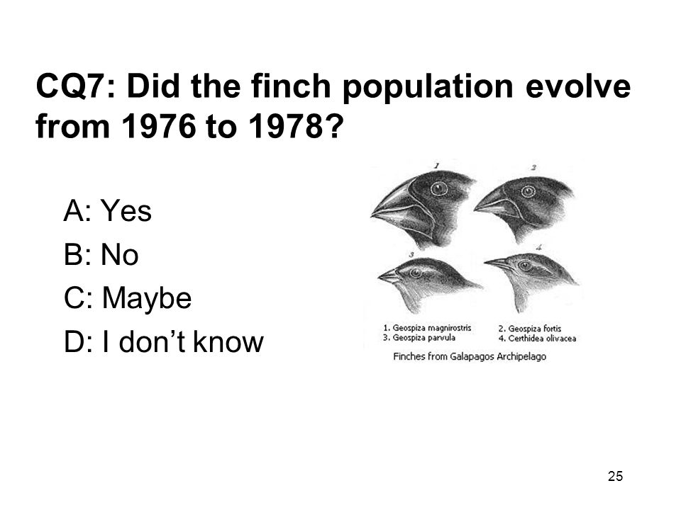 CQ7: Did the finch population evolve from 1976 to 1978
