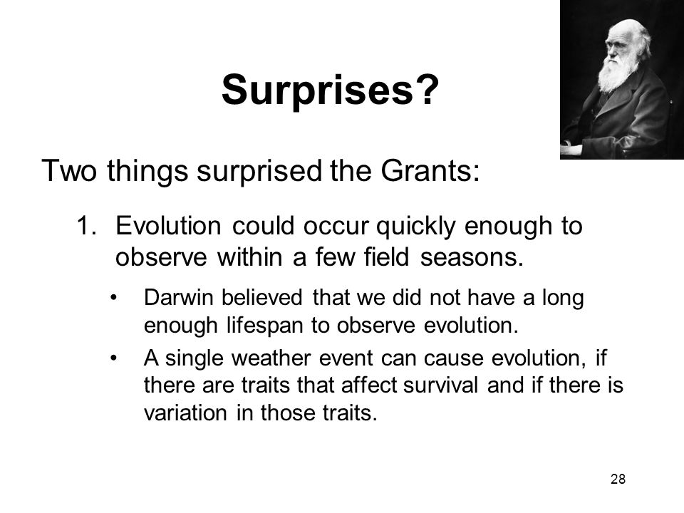 Surprises Two things surprised the Grants: