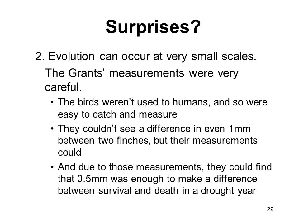 Surprises 2. Evolution can occur at very small scales.