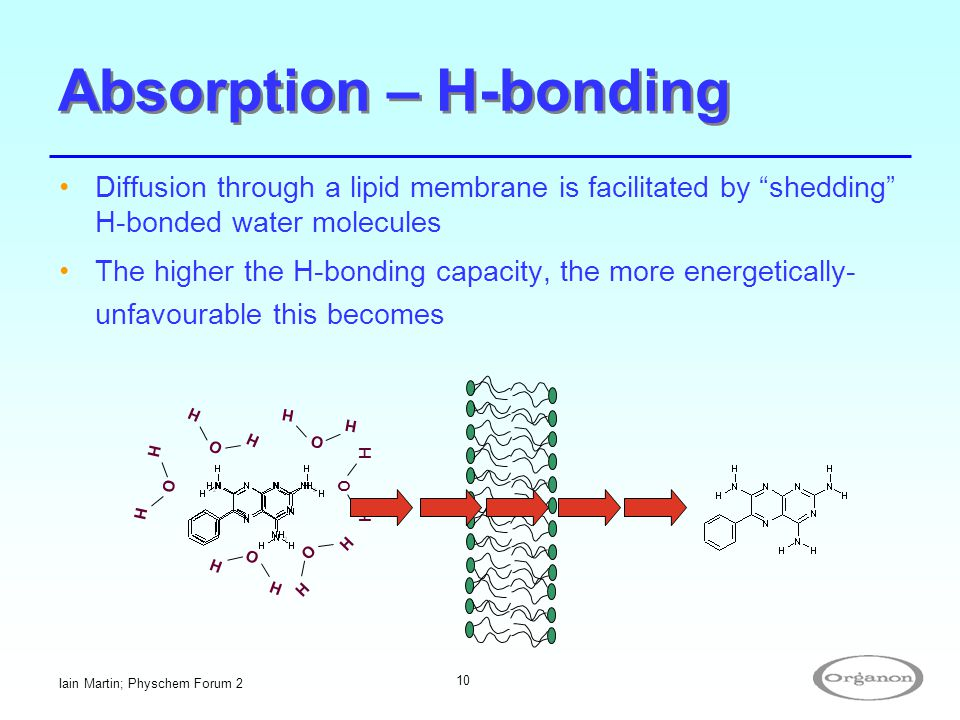 Absorption – H-bonding