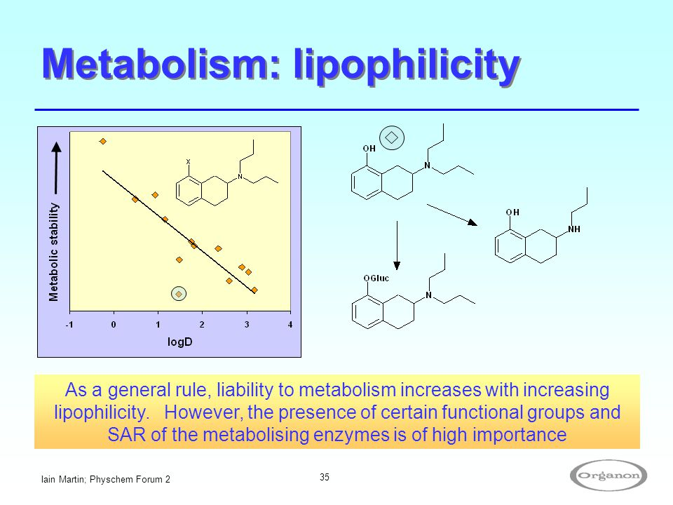 Metabolism: lipophilicity