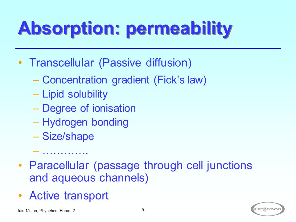 Absorption: permeability