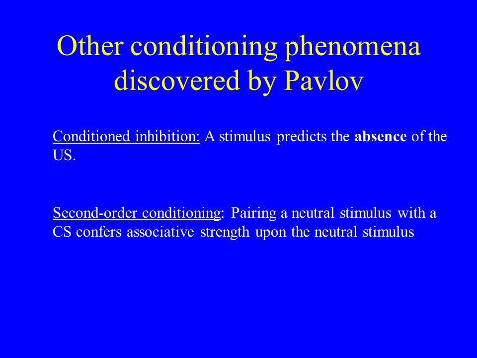 Other conditioning phenomena discovered by Pavlov