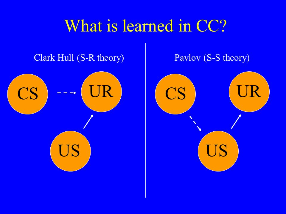 What is learned in CC UR UR CS CS US US Clark Hull (S-R theory)