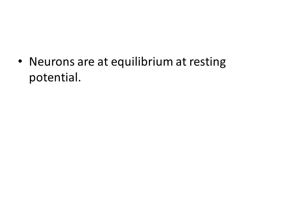 Neurons are at equilibrium at resting potential.