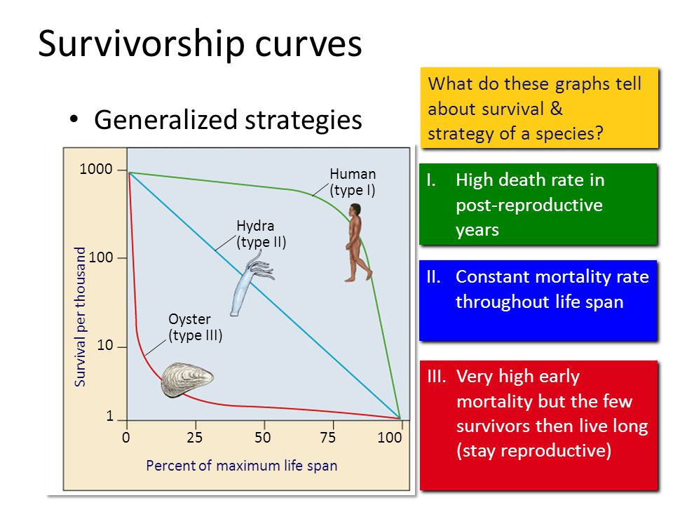 Survivorship curves Generalized strategies