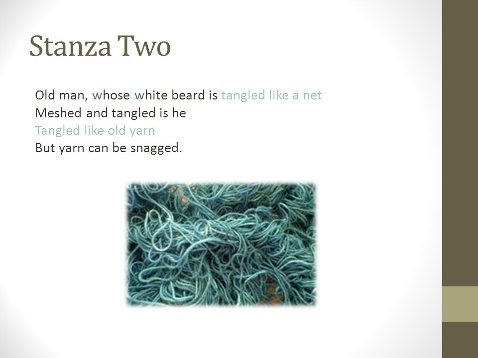 Stanza Two Old man, whose white beard is tangled like a net Meshed and tangled is he Tangled like old yarn But yarn can be snagged.