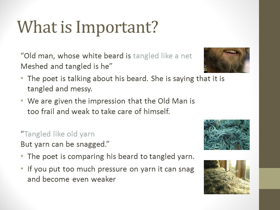 What is Important Old man, whose white beard is tangled like a net Meshed and tangled is he