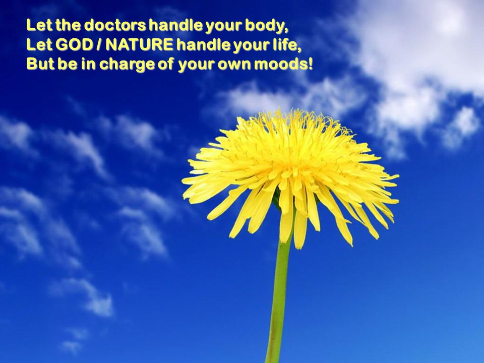Let the doctors handle your body,