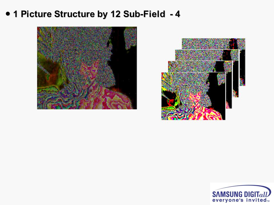 ● 1 Picture Structure by 12 Sub-Field - 4
