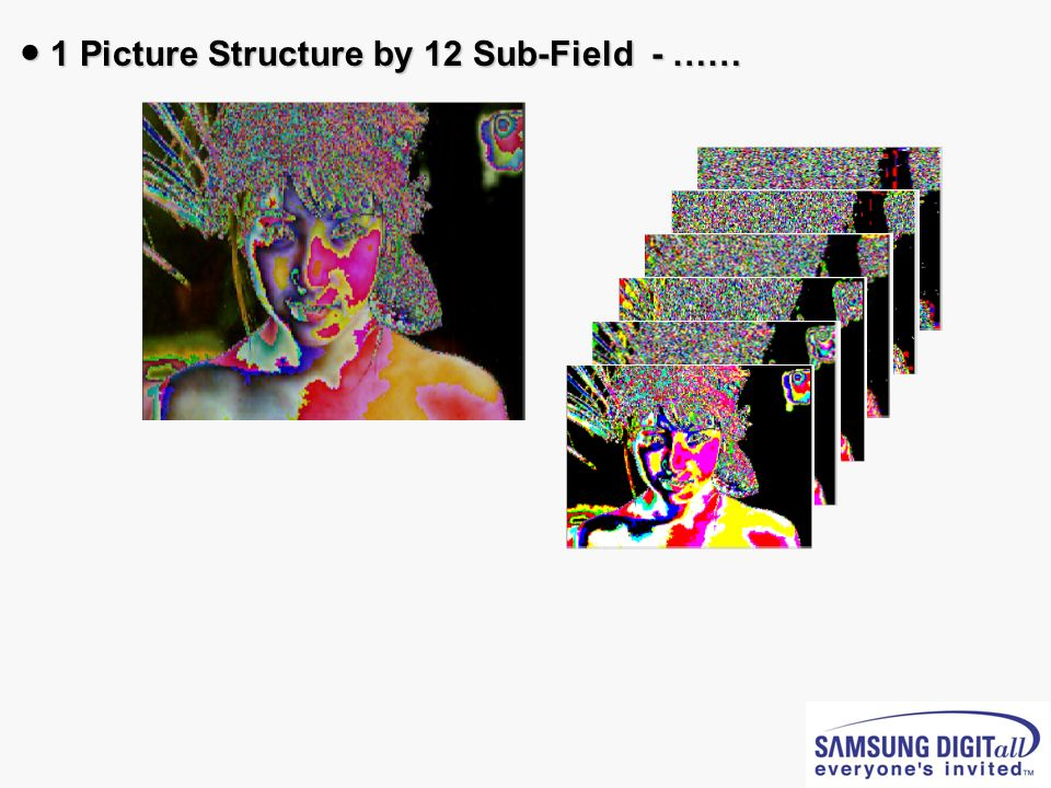 ● 1 Picture Structure by 12 Sub-Field - ……