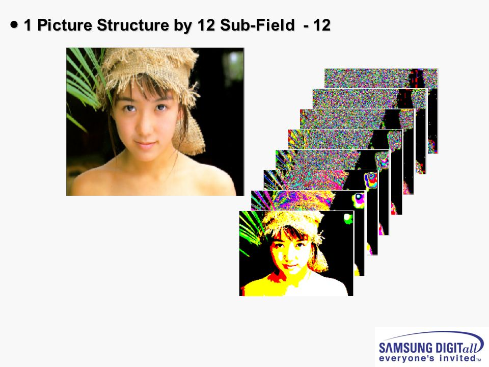 ● 1 Picture Structure by 12 Sub-Field - 12