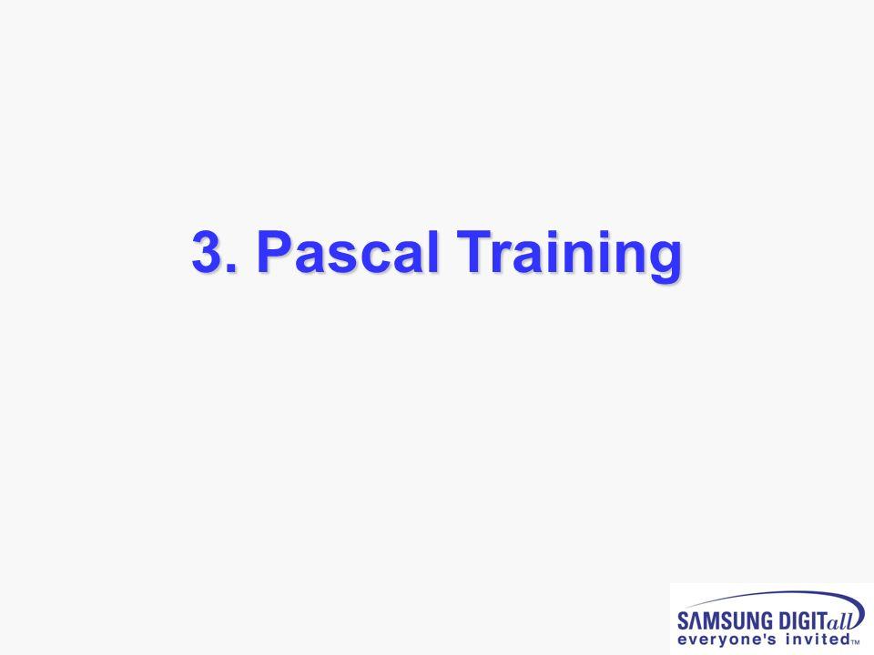 3. Pascal Training