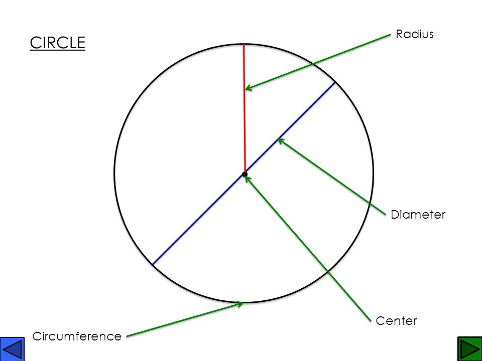 Radius CIRCLE Diameter Center Circumference