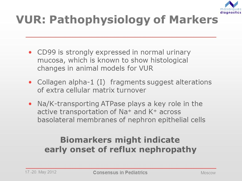 VUR: Pathophysiology of Markers