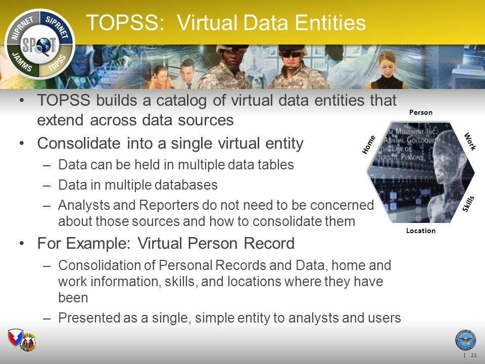 TOPSS: Virtual Data Entities