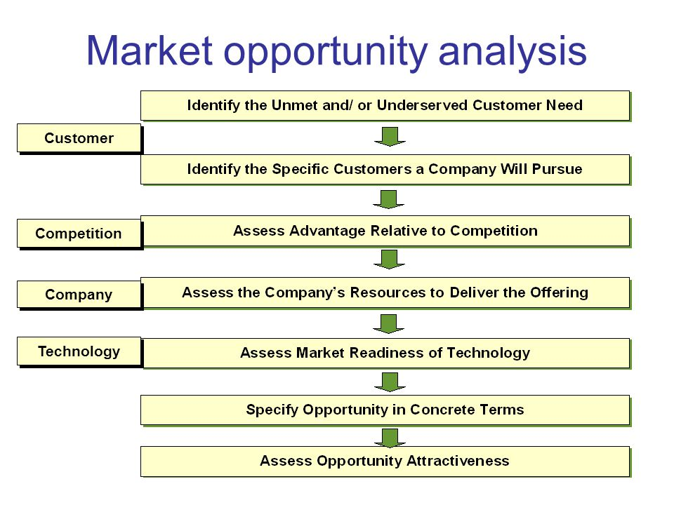 market opportunity analysis business plan
