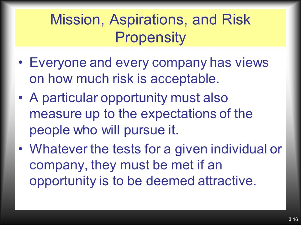 Mission, Aspirations, and Risk Propensity