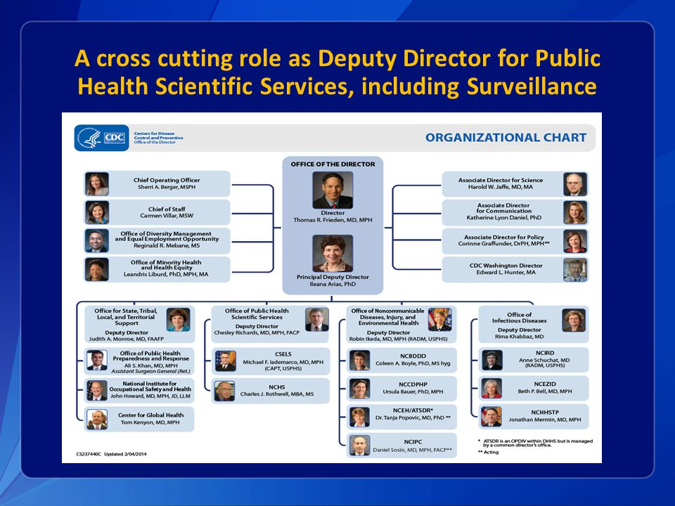 A cross cutting role as Deputy Director for Public Health Scientific Services, including Surveillance