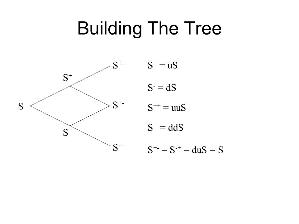 Building The Tree S++ S+ = uS S+ S- = dS S S+- S++ = uuS S-- = ddS S-