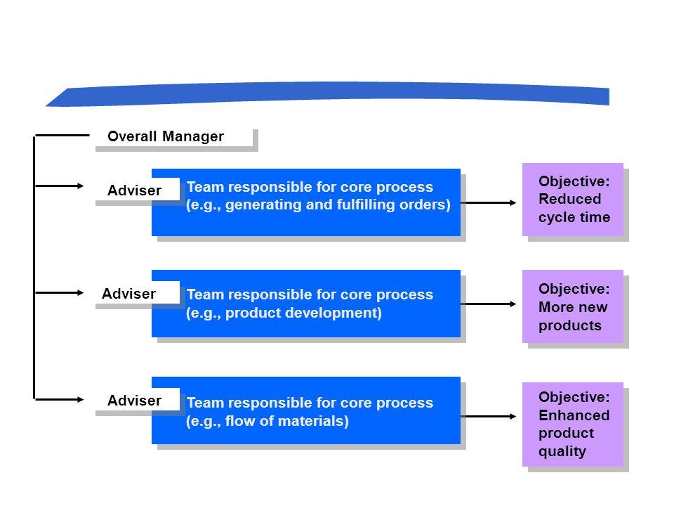 A Horizontal Organization