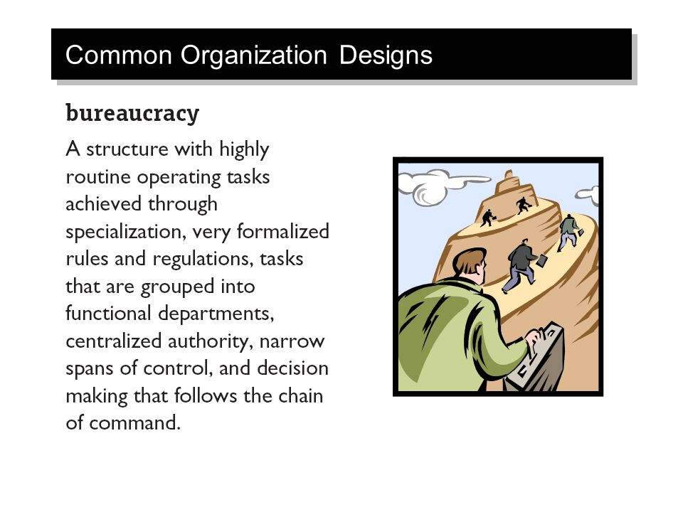 Common Organization Designs