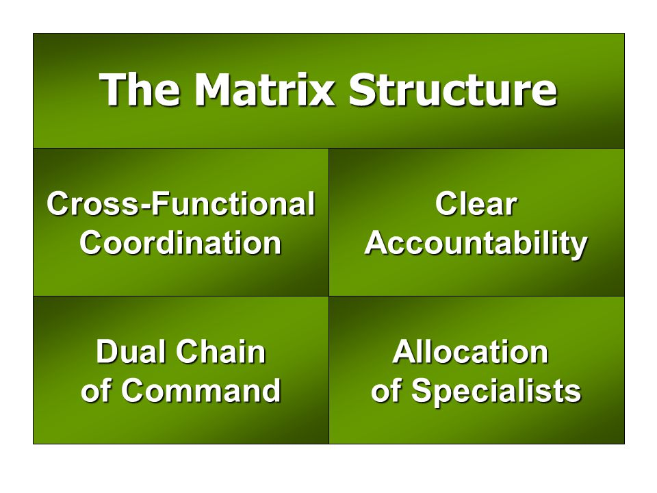 The Matrix Structure Cross-Functional Coordination Clear