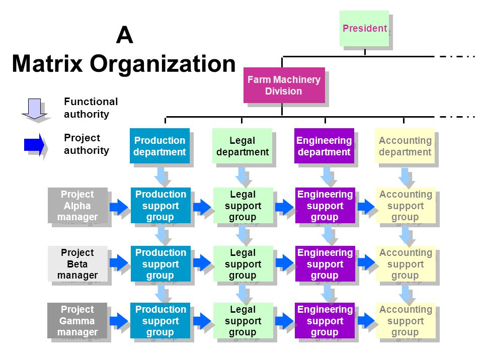 A Matrix Organization Functional authority Project authority President