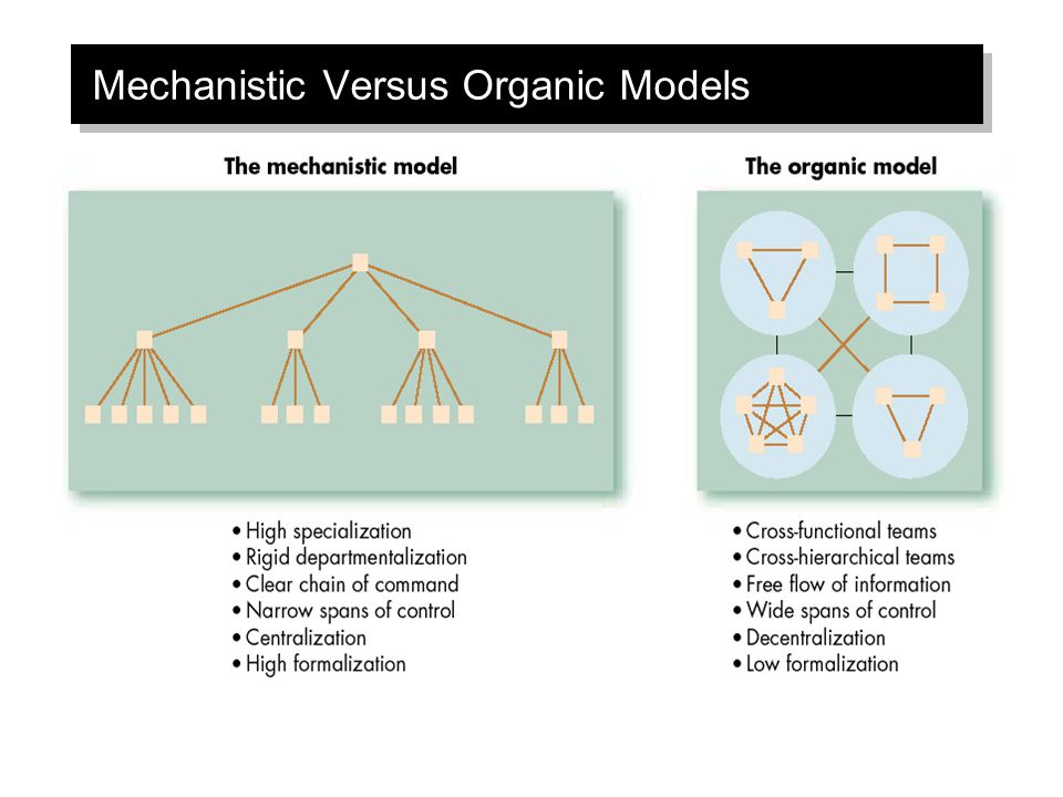 Mechanistic Versus Organic Models