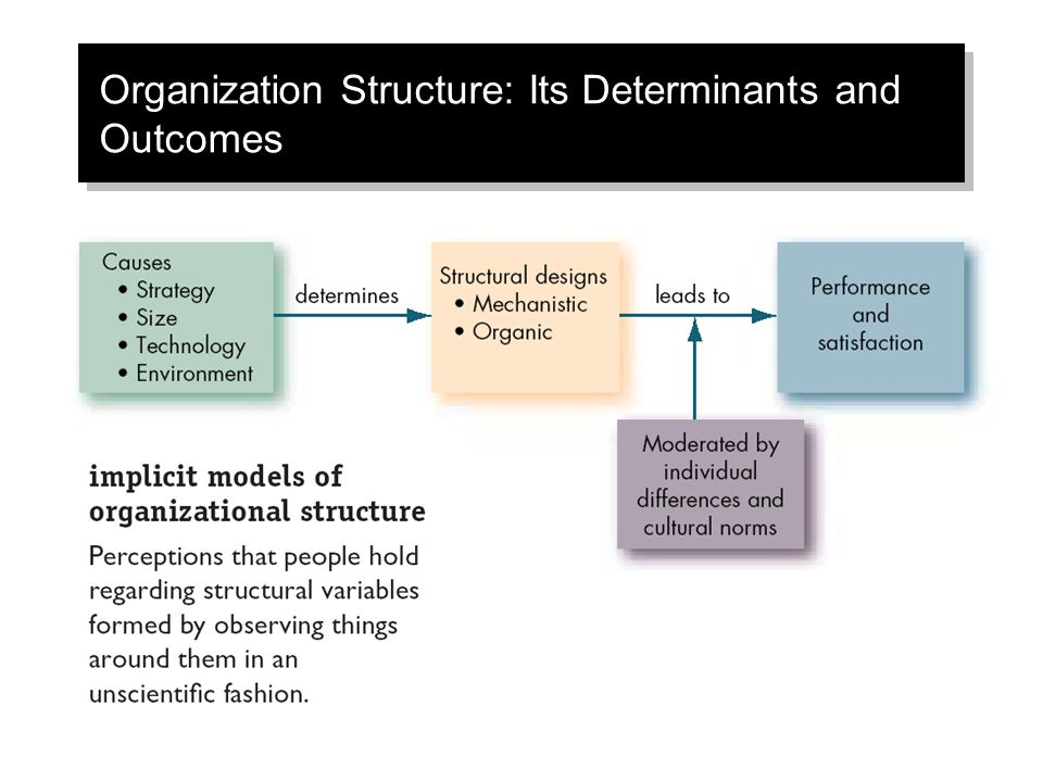Organization Structure: Its Determinants and Outcomes