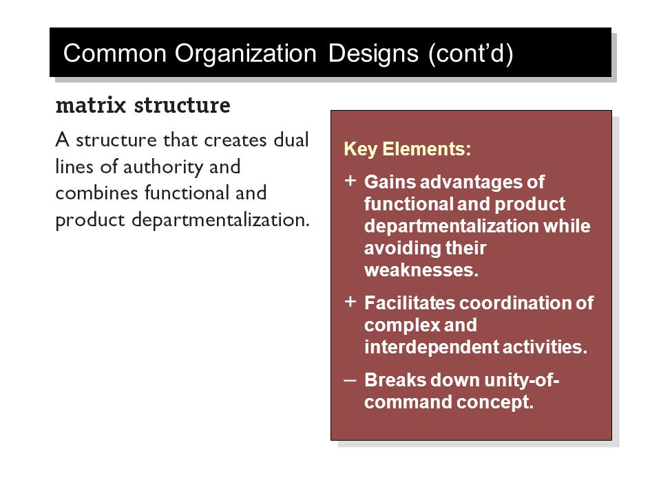 Common Organization Designs (cont'd)