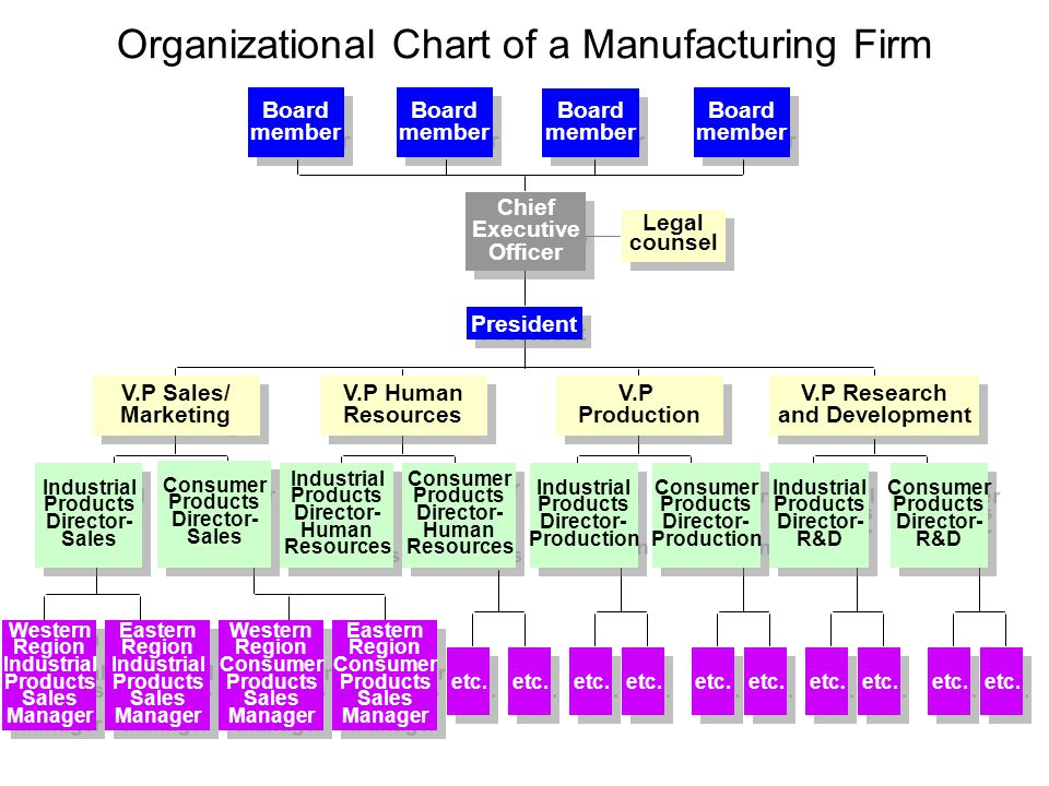 Organizational Chart of a Manufacturing Firm