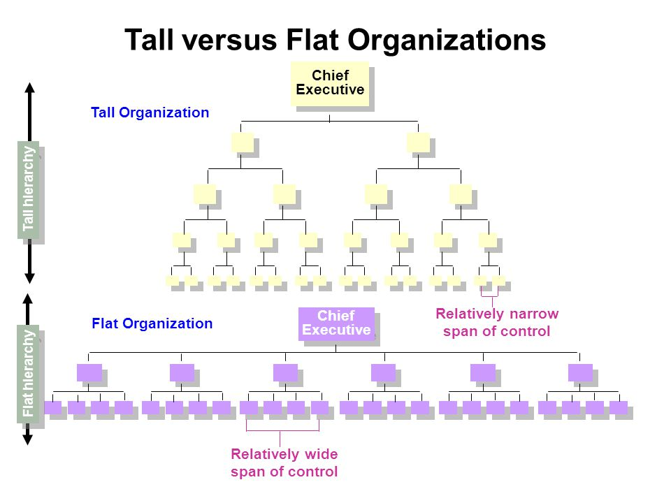 Tall versus Flat Organizations