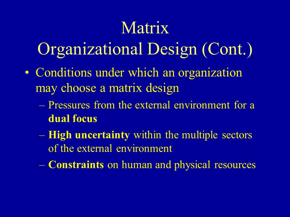 Matrix Organizational Design (Cont.)