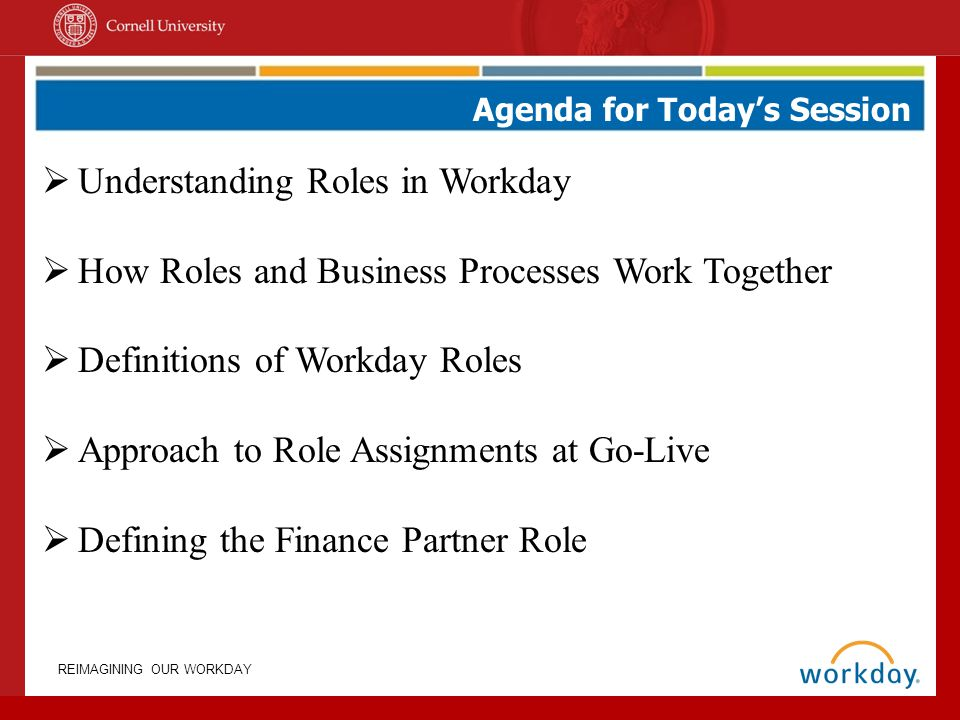 Understanding Roles in Workday